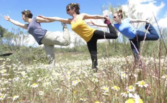 Yoga Stockwell